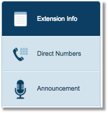 Extension Info option.