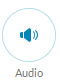 The Audio button allows you to customize your sound settings while on a call.