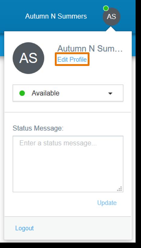 Click Edit Profile.