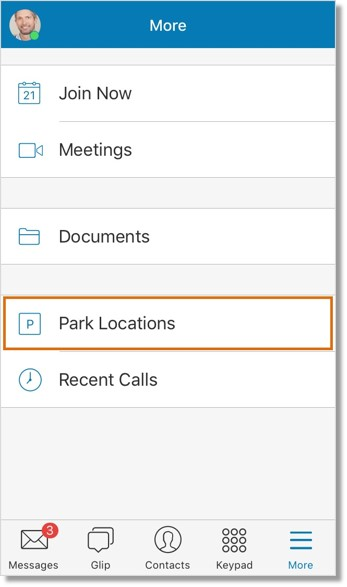 Tap Park Locations to view the list of parked calls.