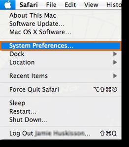 Select System Preferences.