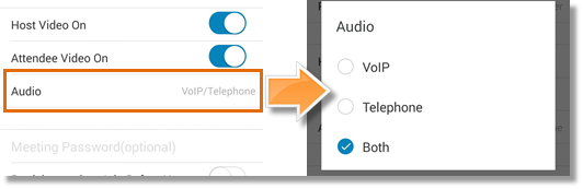 Audio option
