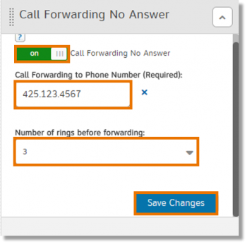 Call Forwarding No Answer section