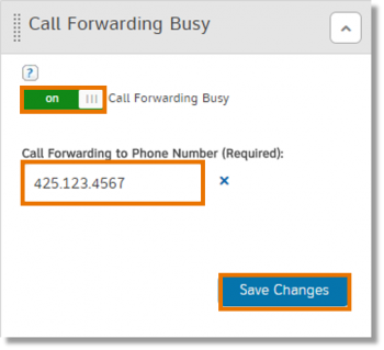 Call Forwarding Busy section