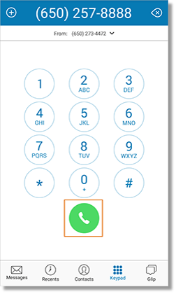 Enter the Phone Number of the person that you wish to call, and then tap the Call button.