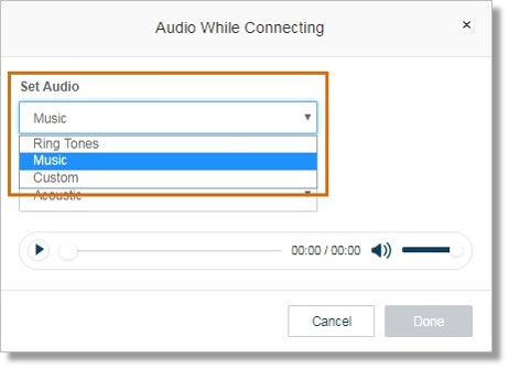 Click the drop-down box below Set Audio to select your preferred audio.