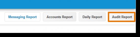 Click Audit Report.