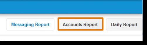 Click Accounts Report.