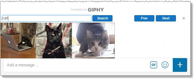 Add a GIPHY to chat (web and desktop only)