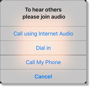 Choose an audio option (tablet)