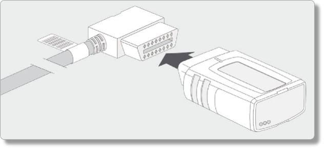 Image of step 5.