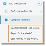 Saved reports can be accessed from the left pane by clicking Company Numbers.