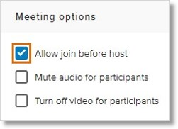 Under Meeting options, check Allow join before host.