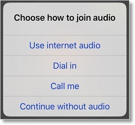 Users can join the meeting audio using different options